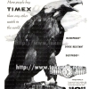 Timex【タイメックス】の広告 -1955年-